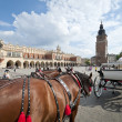 Cabb on the Old Town in Krakow, Poland — Stock Photo