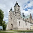 Saint Martin's Church in Opatow, Poland — Lizenzfreies Foto