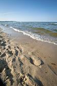 バルチック海岸 — ストック写真