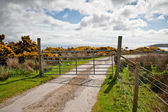 Islay road — Stock Photo