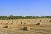 Straw bale and blue sky — Stock Photo