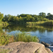 Landscape with pond - Stock Photo