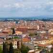 Pisa (Piza) city view — Stock Photo