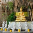 Golden Buddha under a Bodhi tree - Stock Photo