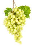 Sweet seedless green grapes on white — Stock Photo