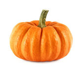 Neat pumpkin on white — Stockfoto