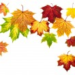 Stock Photo: Colorful autumn leaves falling down