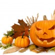 Halloween arrangement on white with copyspace — Foto de Stock