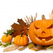 Halloween arrangement on white with copyspace — Stock Photo