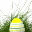 Zdjęcie stockowe: Striped easter egg in green grass