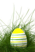 Striped easter egg in green grass — Stok fotoğraf