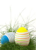 Easter eggs in green grass — Foto Stock