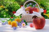 Red apples in basket with flowers in the garden — Stock Photo