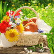 A basket with pasties and flowers in the garden — Foto Stock