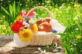 A basket with pasties and flowers in the garden — Stock Photo
