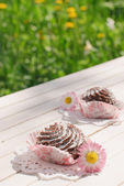 Chocolate cakes on the table in the garden — Stock Photo