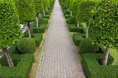 Pavement made of stone in beautiful garden — Stock Photo
