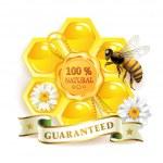 ape con nido d'ape — Vettoriale Stock