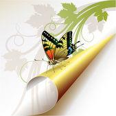 Coin avec papillon — Vecteur