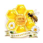 Bee with honeycomb — Stock Vector