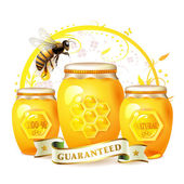 Glass jar with honey — Stock Vector