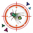 Stock Vector: Target with housefly