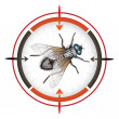 Target with housefly — Stock Vector