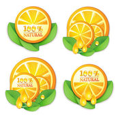 Slices orange with leaf — Stock Vector
