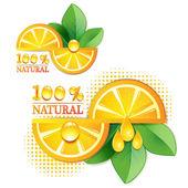 Fatias de laranja com folha — Vetorial Stock