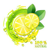 Slices yellow lemon — Stock Vector