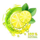 Slices yellow lemon — Stock Vector