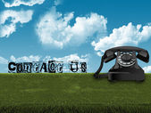 Old telephone in grass — Stock Photo