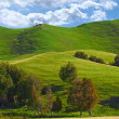 Farmland - New Zealand — Stock Photo