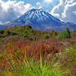 Volcano and landscape - New Zealand — Stock Photo