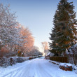 Winter landscape and road at sunset — Stock Photo