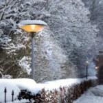 Warm light on winter landscape. — Stock Photo #6537592