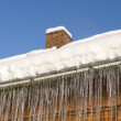 Thawing icicles — Stock fotografie