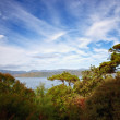 New Zealand landscape photo - Stock Photo
