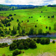 New Zealand landscape photo — Stock Photo