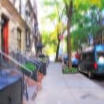 Street life at Manhattan - New York City — Stock Photo #6538087