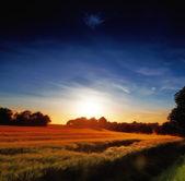 Landschap sunset — Stockfoto