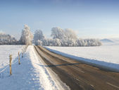 Country road in winter landscape — Stock Photo