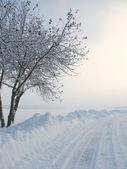 Sabah erken kış manzarası — Stok fotoğraf