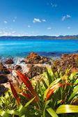 Karaka Bay - Wellington, New Zealand — Stock Photo