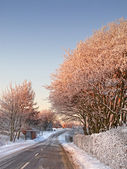 Winterlandschap en weg bij zonsondergang — Stockfoto