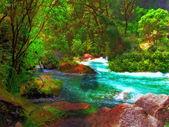 New Zealand landscape photo — Stock Photo