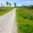 Countryroad - on a summer day — Stock Photo