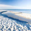 Stock Photo: White sand beach - Jutland, Denmark