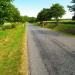 Countryroad — Stock Photo