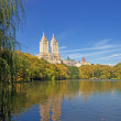 a beleza do central park — Foto Stock